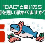 """""""DAC""""と聞いたら何を思い浮かべますか?"""