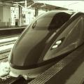 nemoto_yusuke